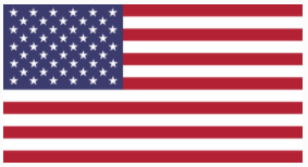 2021-01-05 21_34_54-The United States flag icon - Country flags